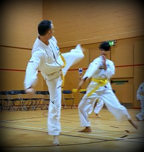 adults tkd